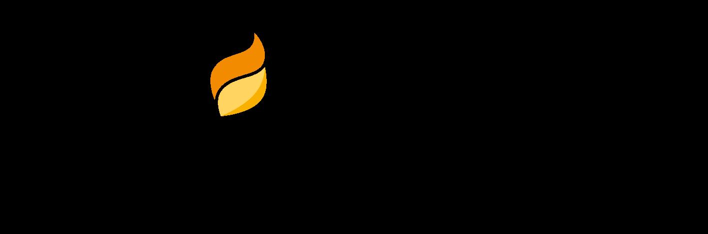 Bioenergie Freudenstadt Logo